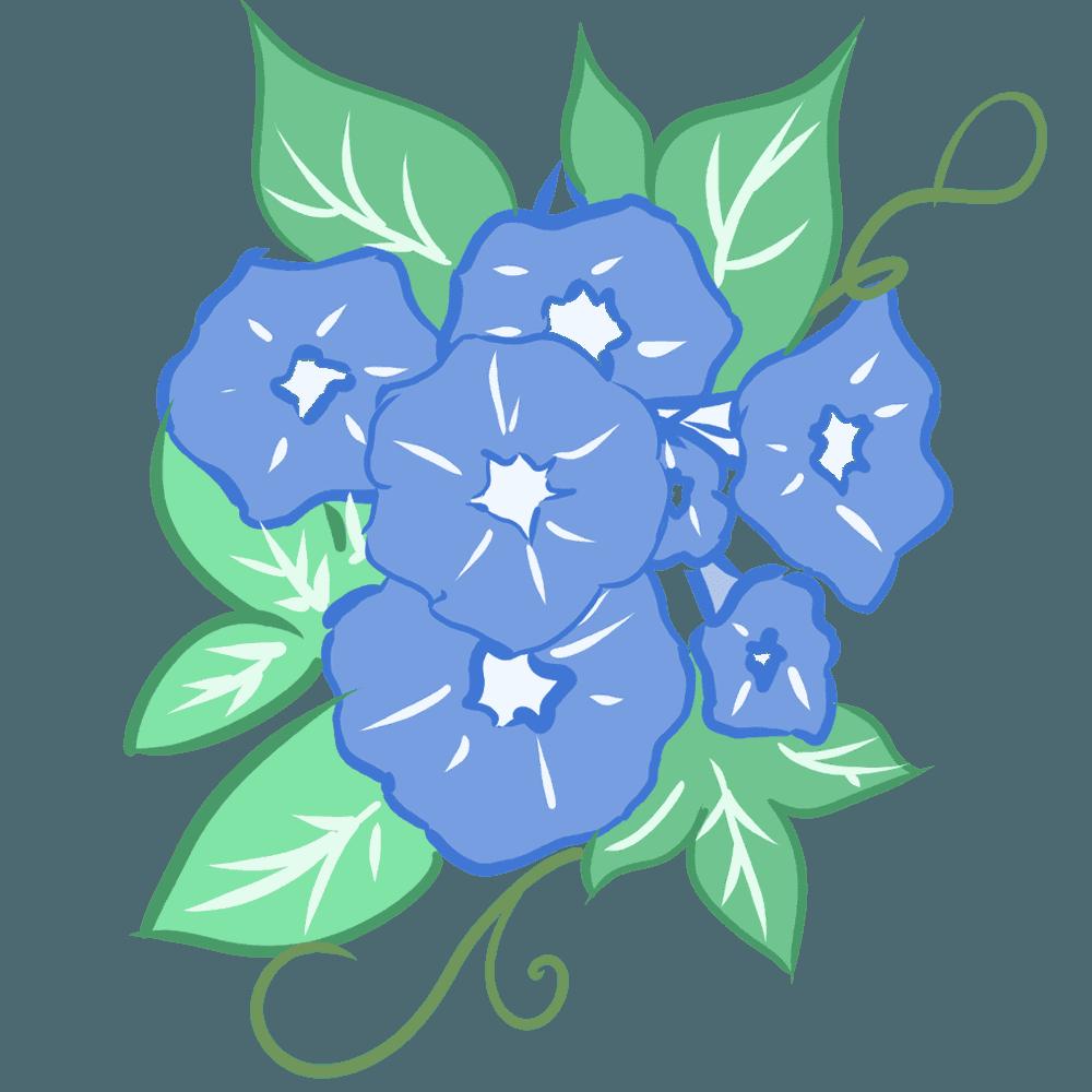 青い朝顔のイラスト
