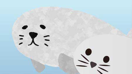 可愛いあざらしイラスト - フリーで使える海の動物素材
