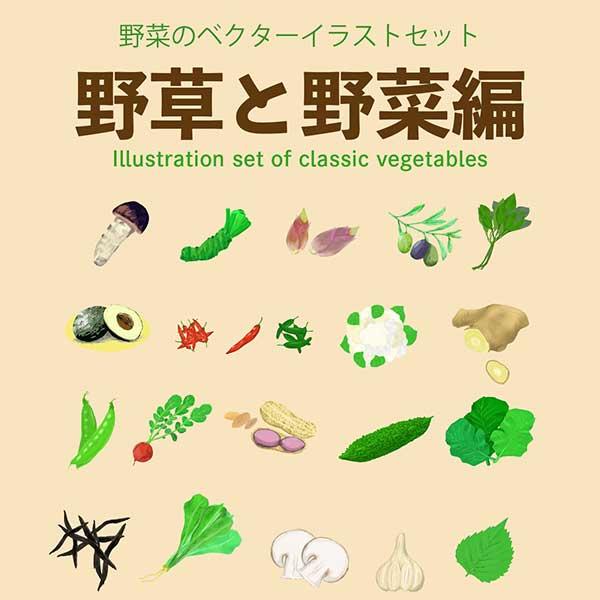 野草と野菜のベクターイラストセット