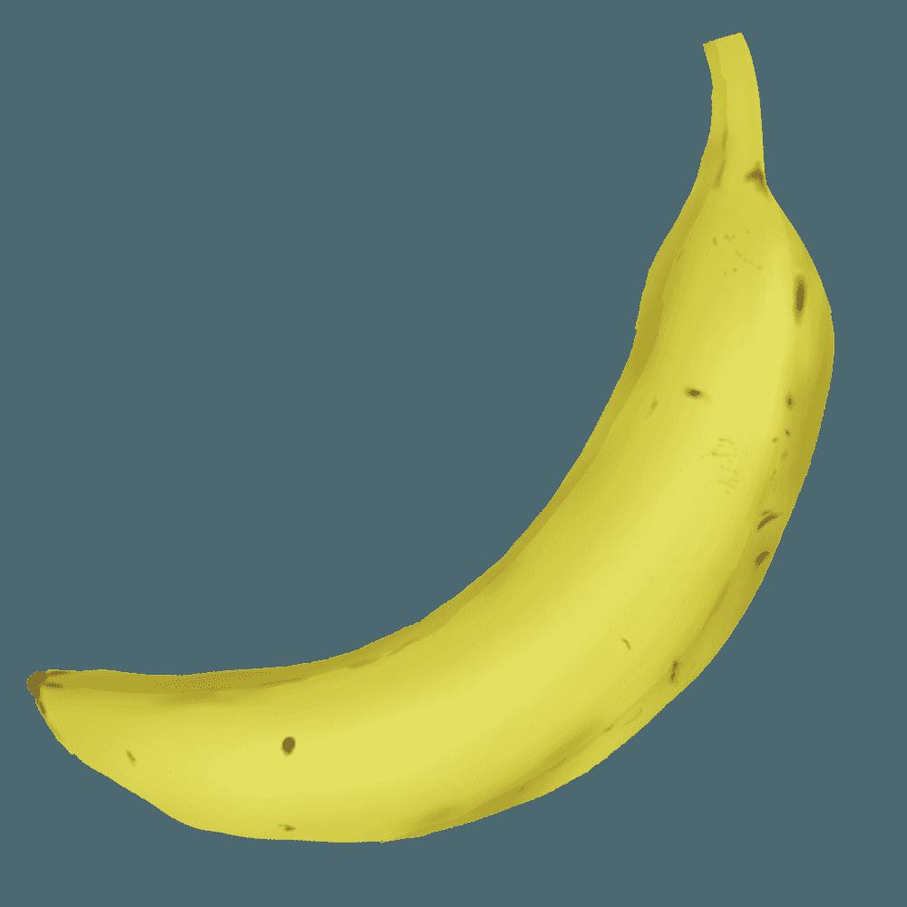 リアルな1本のバナナイラスト