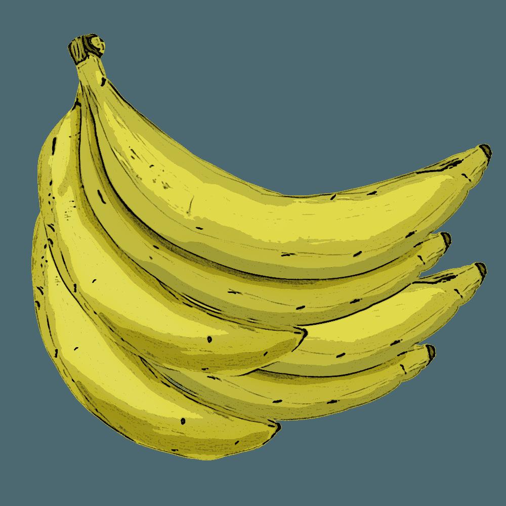 アートなバナナイラスト