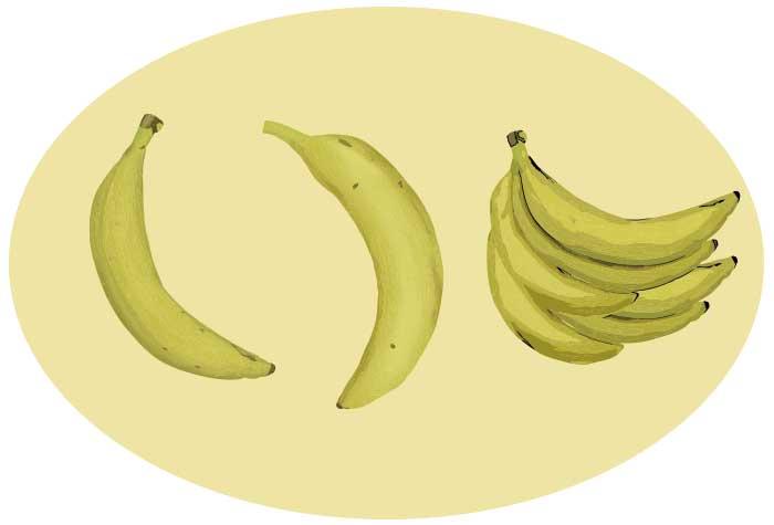 バナナのベクター素材