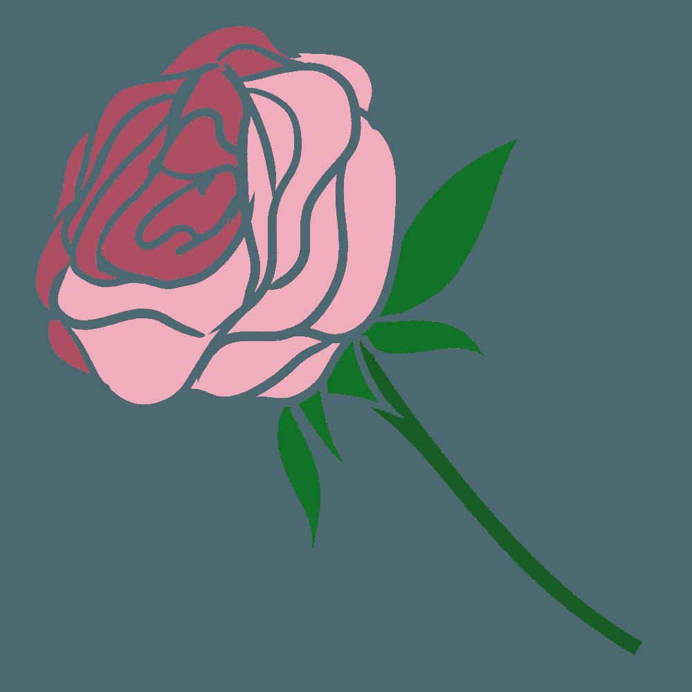 ガーリーなピンクのバライラスト