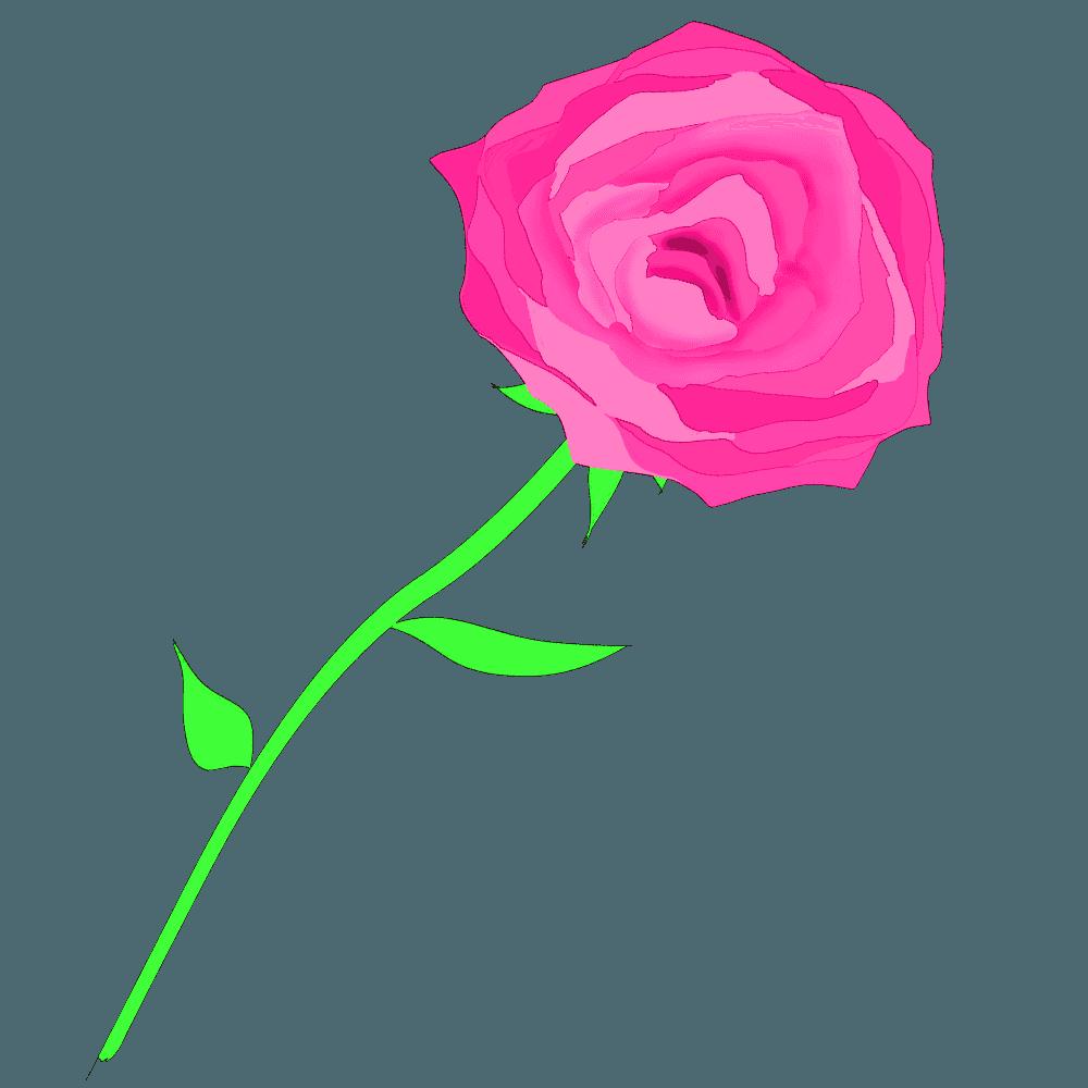 ピンク色のバライラスト