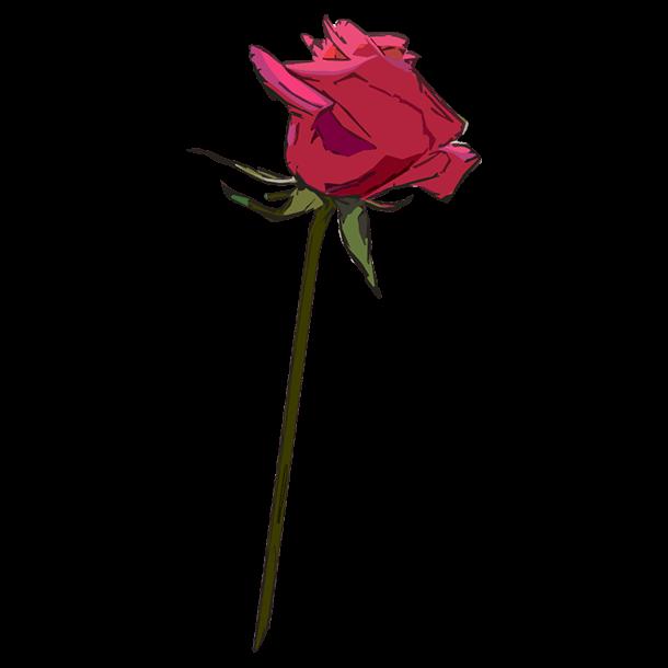 水彩タッチ薔薇一輪(横)のイラスト