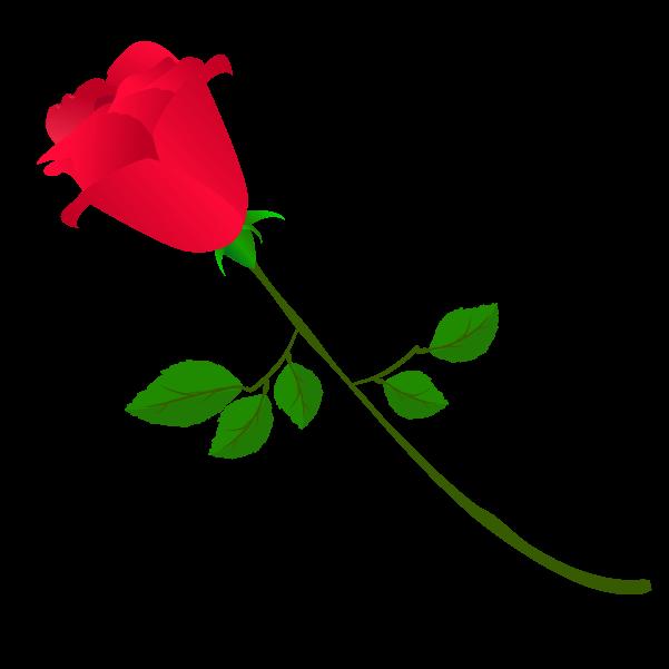 薔薇の蕾のイラスト