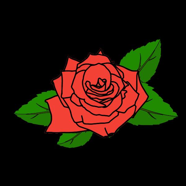 薔薇の飾りのイラスト