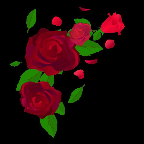 散る薔薇のイラスト
