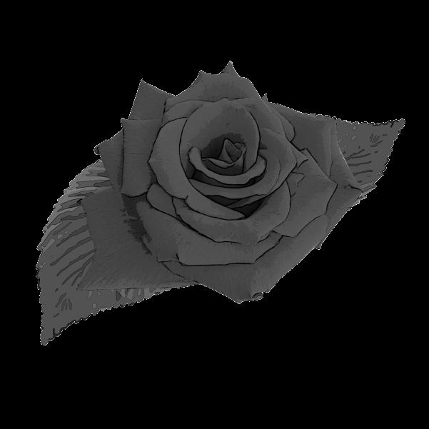 白黒の薔薇のイラスト1