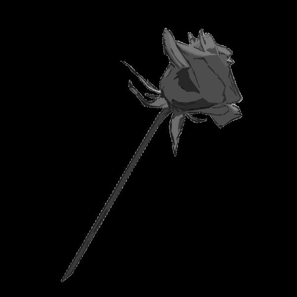 白黒の薔薇のイラスト2