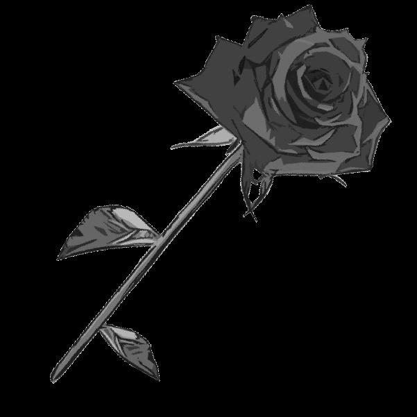 白黒の薔薇のイラスト4