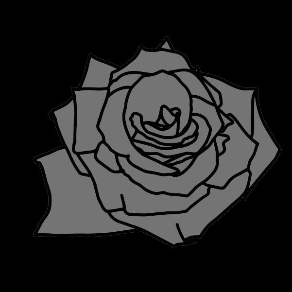白黒の薔薇のイラスト6
