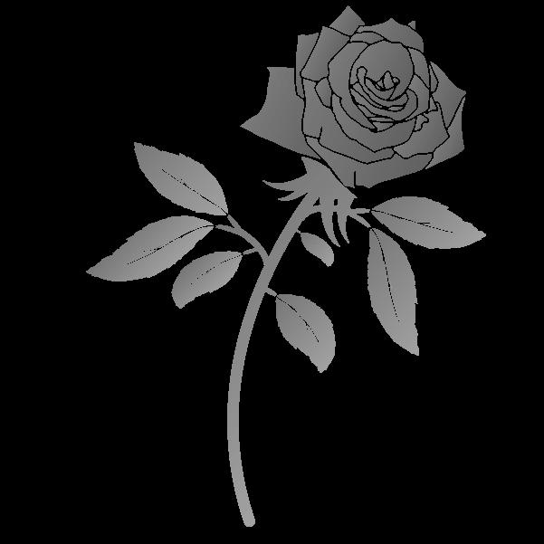 白黒の薔薇のイラスト8