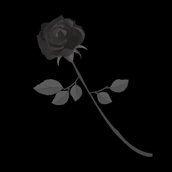 白黒の薔薇のイラスト9