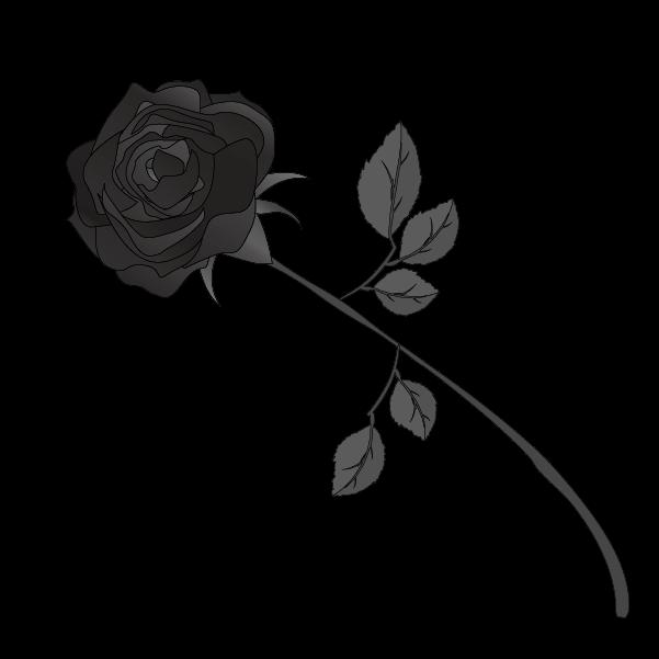 白黒の薔薇のイラスト12