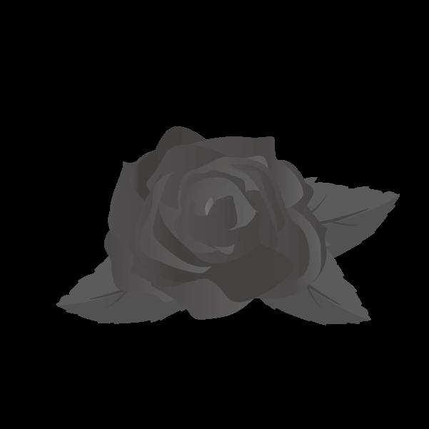 白黒の薔薇のイラスト14
