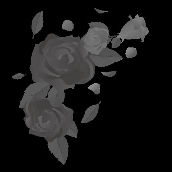 白黒の薔薇のイラスト15