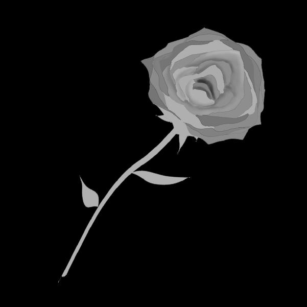 白黒の薔薇のイラスト23