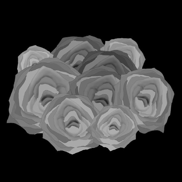白黒の薔薇のイラスト26