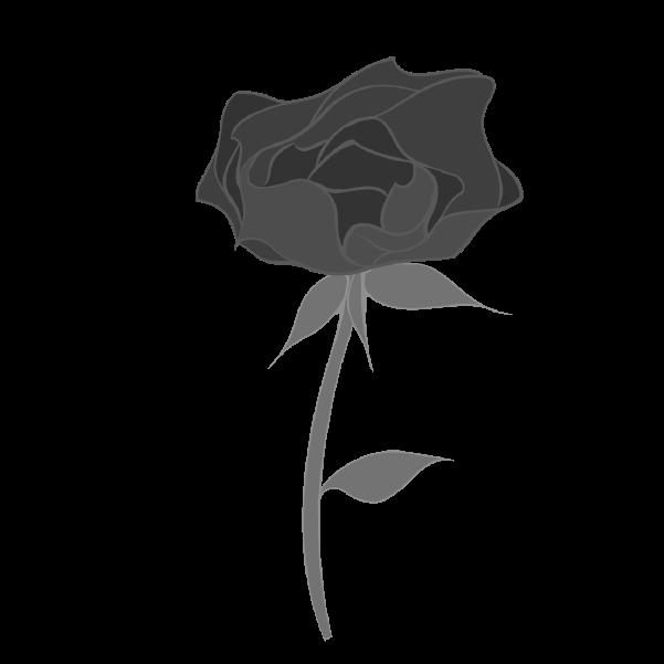 白黒の薔薇のイラスト27