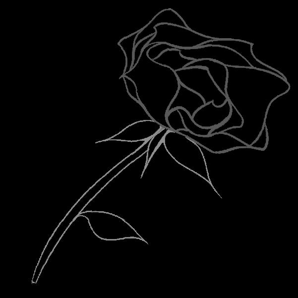 白黒の薔薇のイラスト28