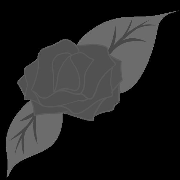 白黒の薔薇のイラスト30