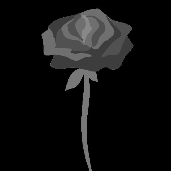 白黒の薔薇のイラスト31