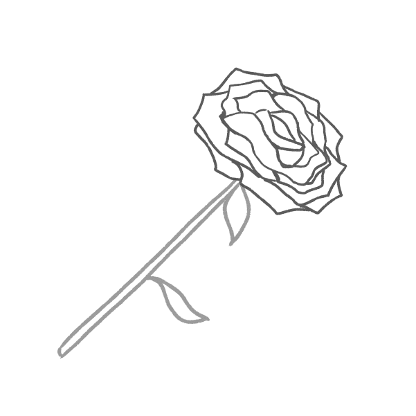 白黒の薔薇のイラスト33