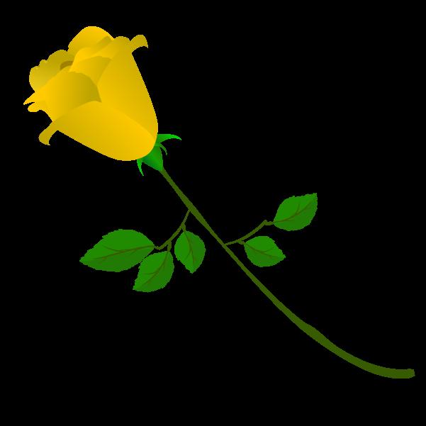 黄色い薔薇の蕾のイラスト