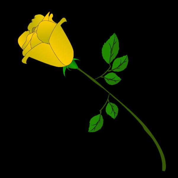 黄色い薔薇の蕾のイラスト2
