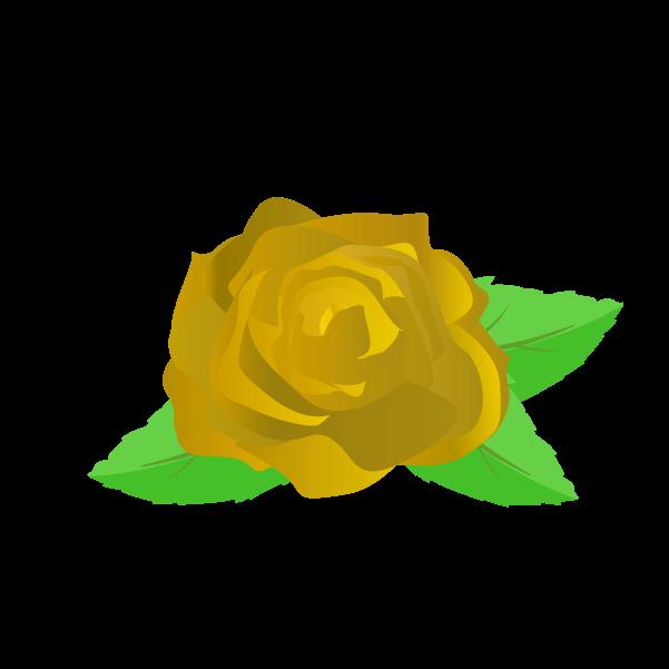 黄色い薔薇の花びらと葉のイラスト3