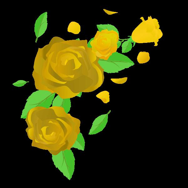 黄色い薔薇の花びらと葉のイラスト4