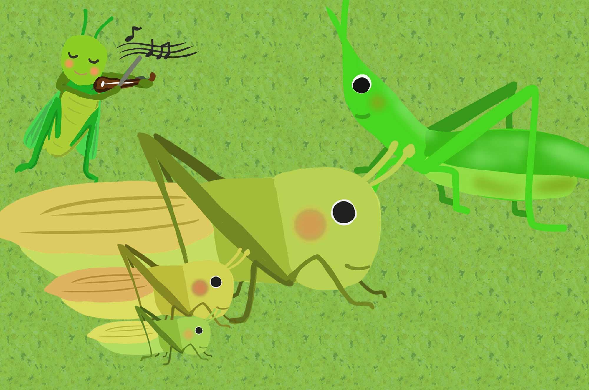 バッタイラスト - 飛んだりはねたり可愛い昆虫無料素材