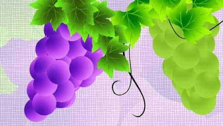 ぶどうイラスト - かわいいフルーツの無料イラスト素材
