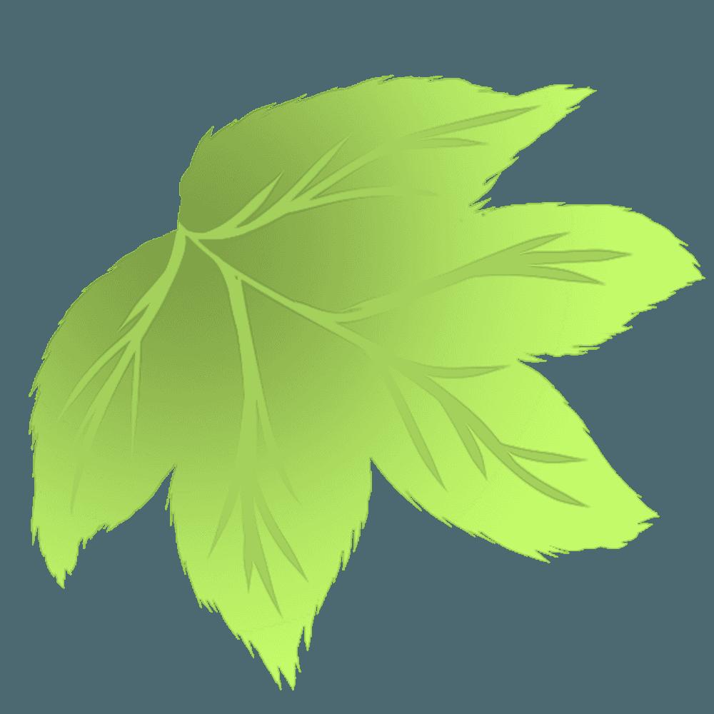 ぶどうの葉っぱのイラスト