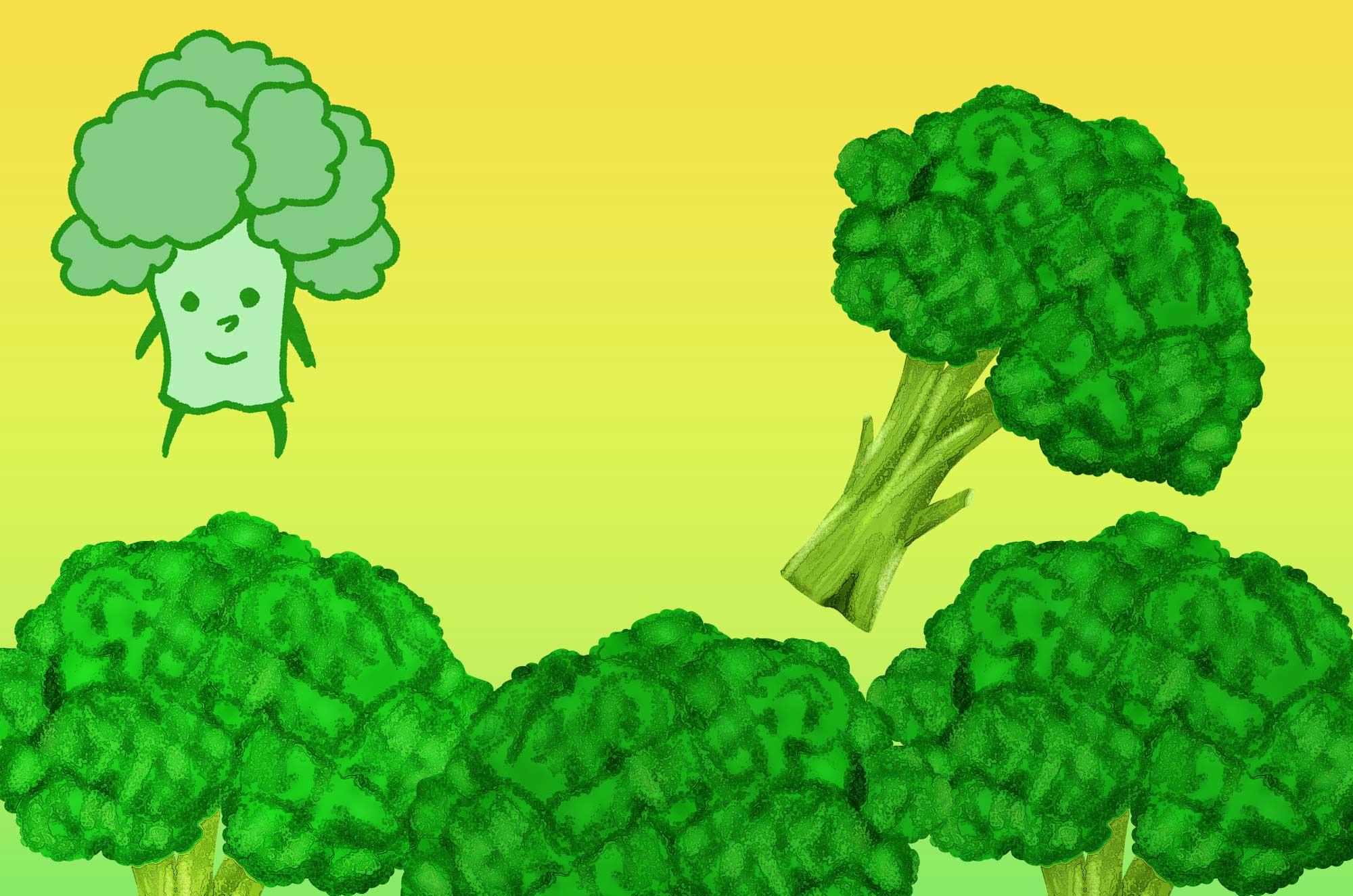 ブロッコリーイラスト素材 - 無料で使える野菜の画像