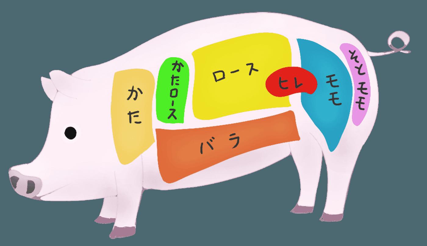 豚肉の部位についてのフリーイラスト