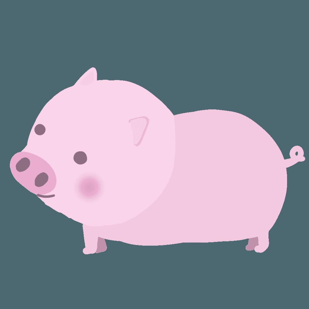 子豚イラスト