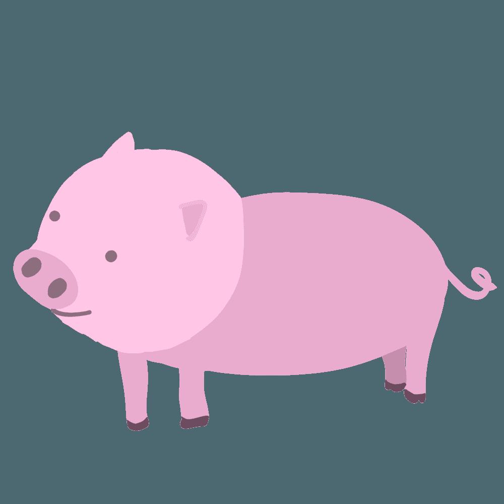 普通の豚イラスト