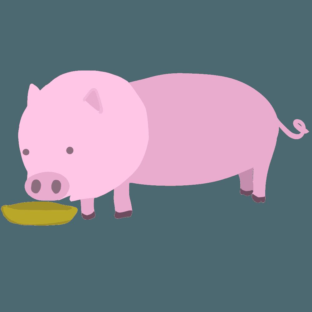 豚がエサを食べているイラスト