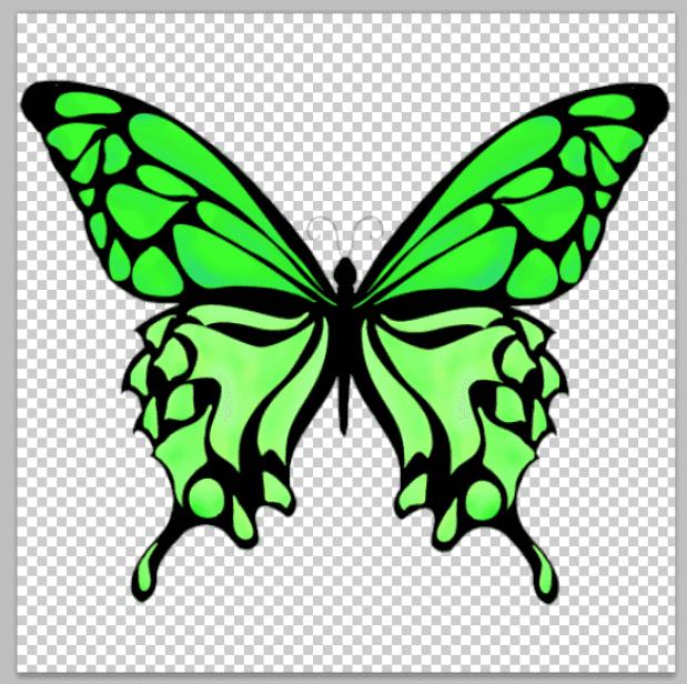 蝶のフリーイラストをphotoshopで開く。