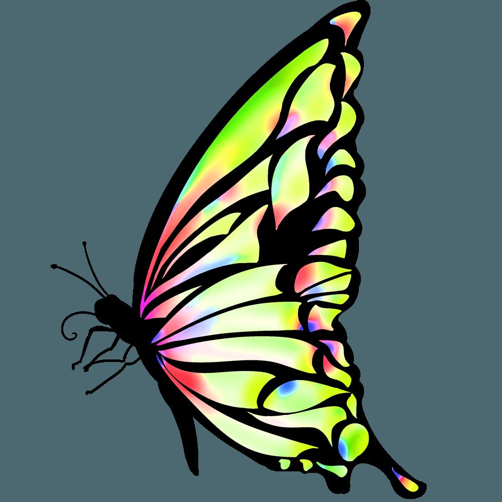 オレンジから黄緑のグラデ蝶のイラスト
