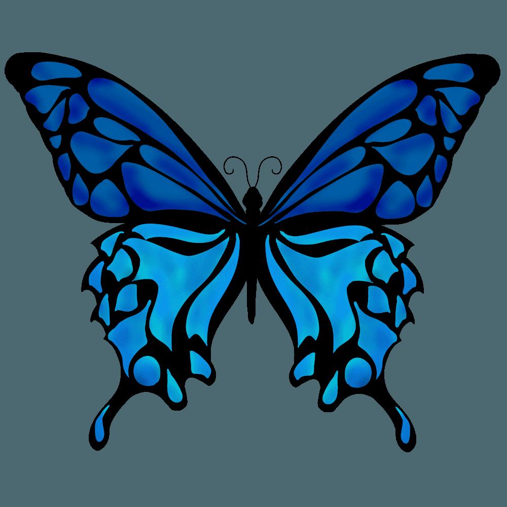 深い青色の羽をもつ蝶イラスト
