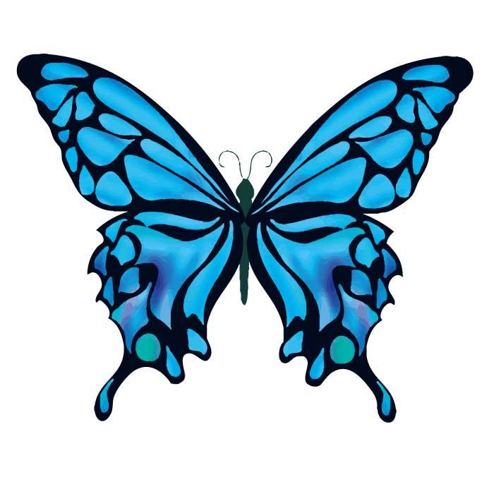綺麗な蝶のベクターイラスト