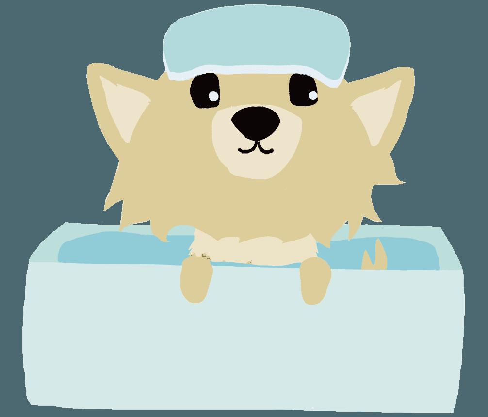お風呂に入るチワワのイラスト