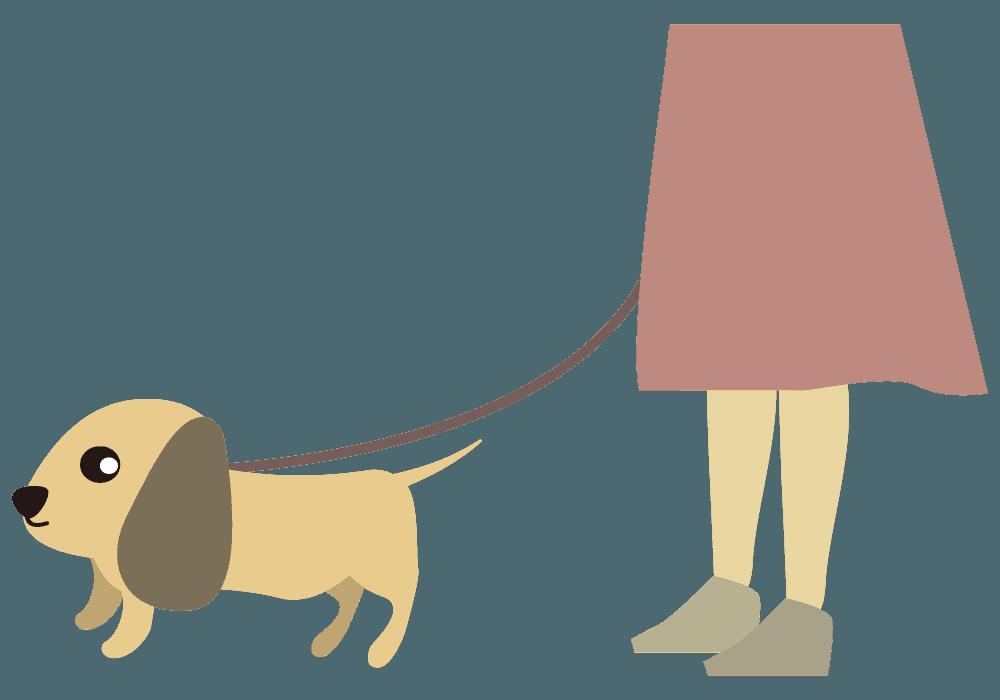 散歩するダックスフンドのイラスト