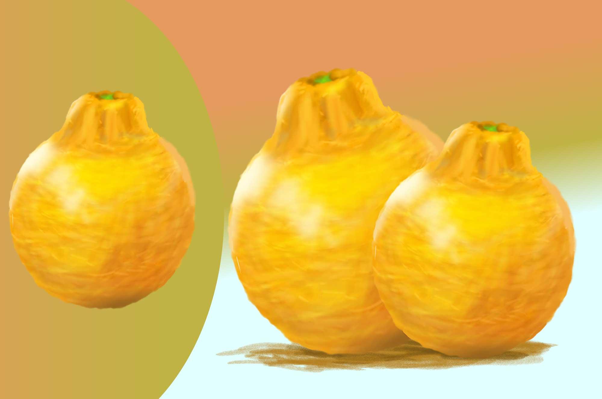デコポン(不知火)の無料イラスト - 柑橘果物素材