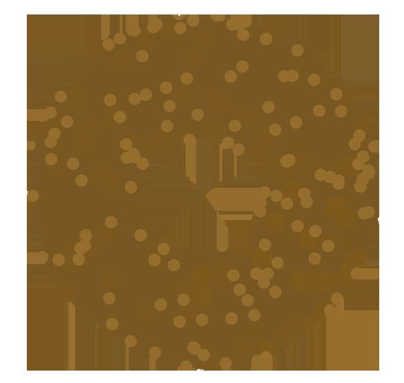 つぶチョコドーナッツ