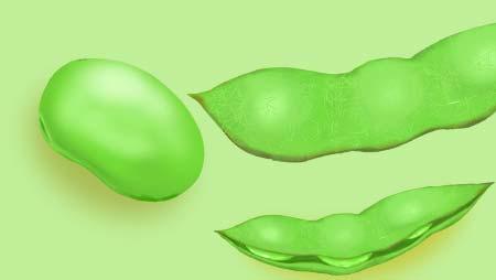 枝豆のイラスト - 美味しそうなおつまみ野菜の無料素材