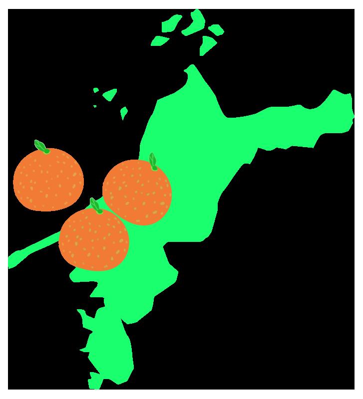 愛媛の地図とみかんのイラスト